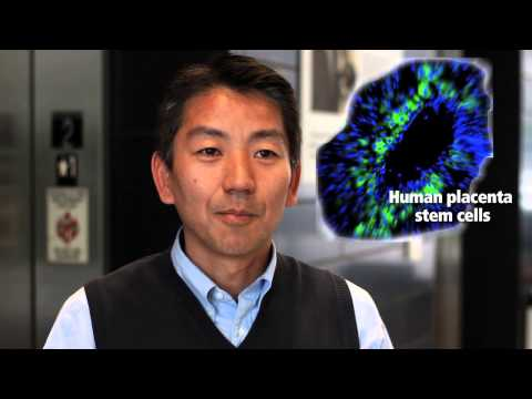 Toshio Miki - CIRM Stem Cell #SciencePitch Challenge
