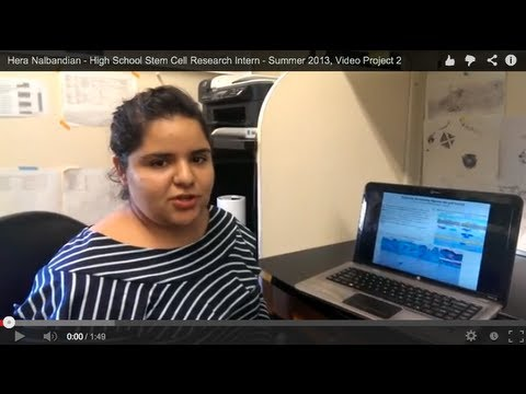 Hera Nalbandian - High School Stem Cell Research Intern - Summer 2013, Video Project 2