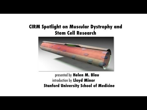 Duchenne Muscular Dystrophy and Stem Cell Research - Helen Blau, Stanford Medicine