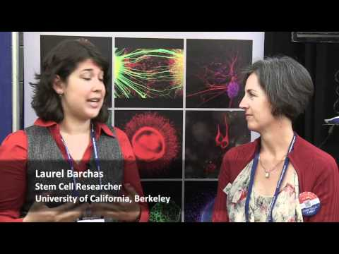 Laurel Barchas: The World Stem Cell Summit brings people together to find therapies