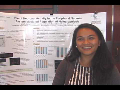 Leigh Ann Llarena - High School Stem Cell Research Intern - July Summer 2013