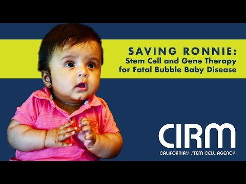 Stem Cell & Gene Therapy for Fatal Bubble Baby Disease